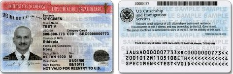 USCIS Redesigns Employment Authorization Document and Certificate – Sample Employment Authorization Form